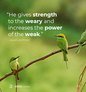 """He gives strength to the weary and increases the power of the weak."" - isaiah 40:29 NIV"