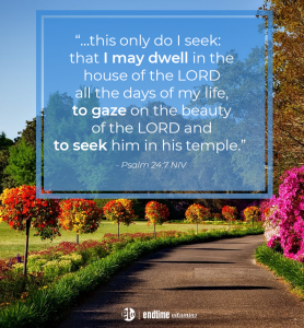 """""""... this only do I seek: that I may dwell in the house of the Lord all the days of my life, to gaze on the beauty of the LORD and to seek Him in his temple."""" - Psalm 24:7 NIV"""