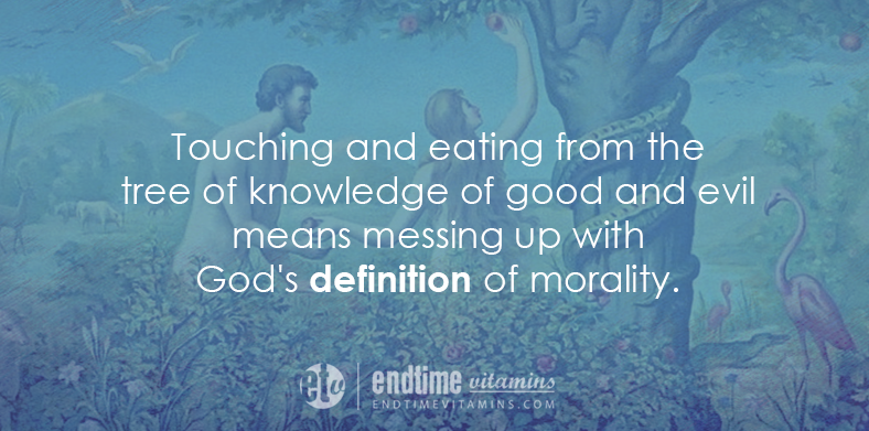 endtimevitamins tree of knowledge of good and evil2